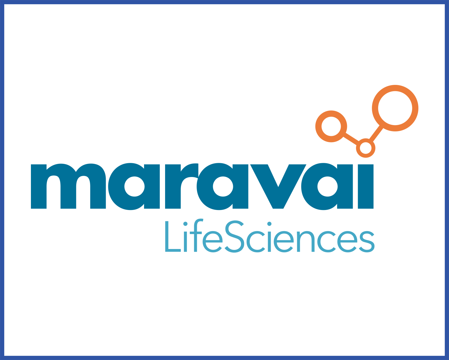 IPO компанії Maravai LifeSciences (MRVI)