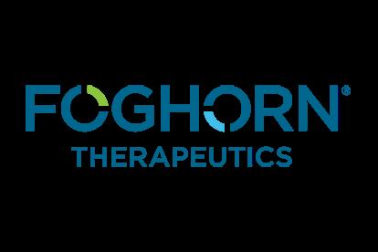 IPO Foghorn Therapeutics (FTHX) – знову біотех з лікування раку