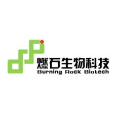 IPO Burning Rock Biotech